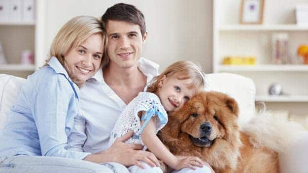 Wills & Trusts dog-young-family Direct Wills Liphook